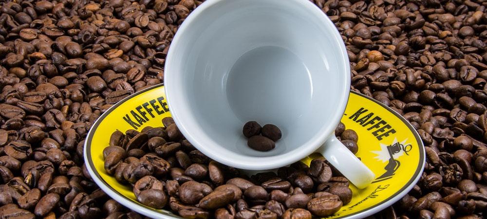 caffè elisir lunga vita
